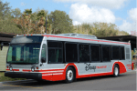 Optional Express Bus Transportation Coming to WDW