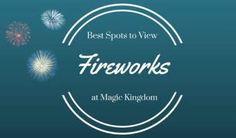 The Best Spots to View Fireworks at the Magic Kingdom~WDW