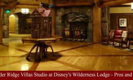Boulder Ridge Villas Studio at Disney's Wilderness Lodge – The Pros and Cons