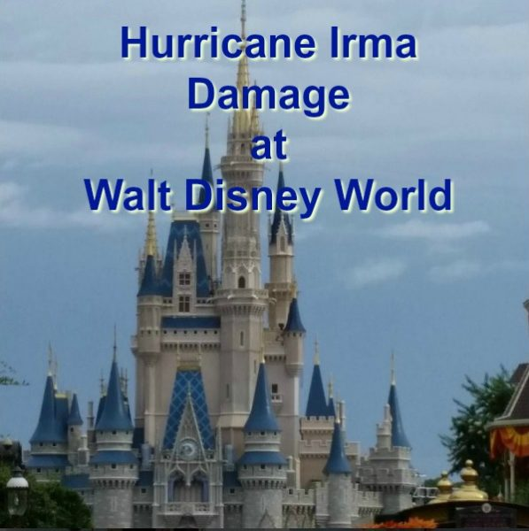 WDW Hurricane Irma Damage