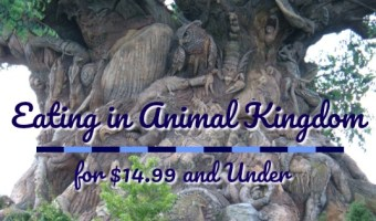 Eating in Animal Kingdom for $14.99 and Under
