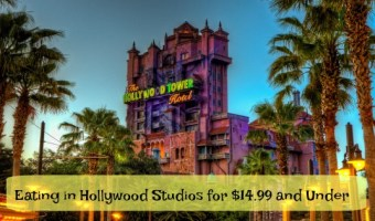 Eating in Hollywood Studios for $14.99 and Under