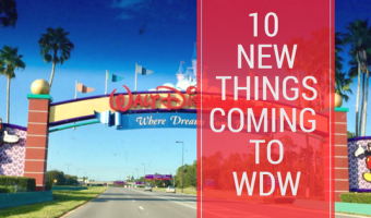 Ten New Things Coming to Walt Disney World Before 2021