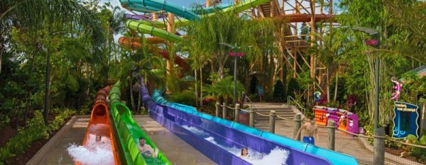 Amazing Theme Parks SeaWorld