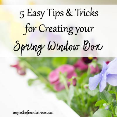 Tips for Spring Window Boxes via The Freckled Rose