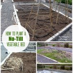 Planting A Garden Bed The No-Till Way = Less Weeds