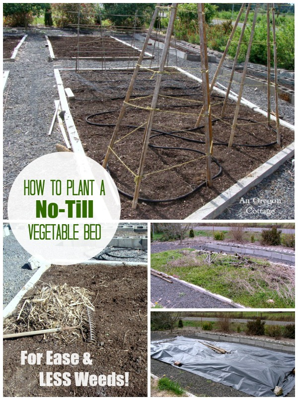 Planting a Garden Bed - How to use a No-Till Method for your vegetable garden and have a LOT less weeds and work.