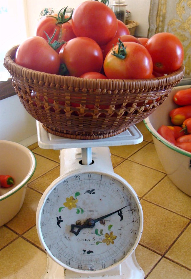 Favorite salsa for canning-weighing tomatoes