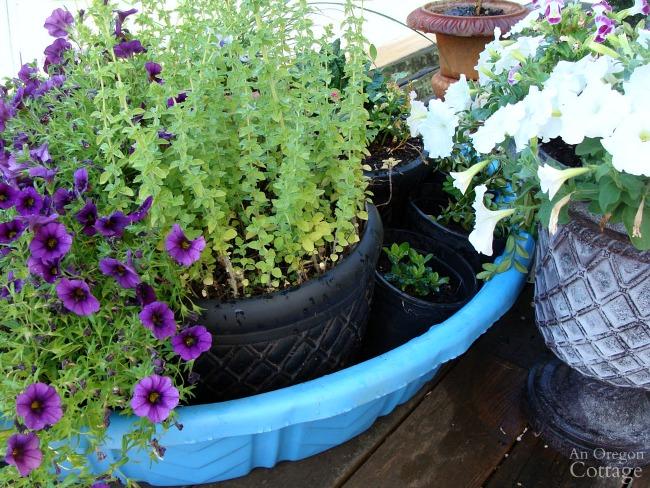 Punta de riego de vacaciones para plantas en maceta