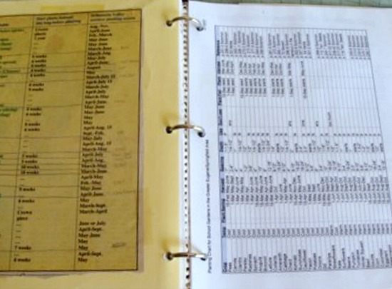 Organizing garden paperwork6