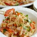 Spicy Chicken Noodle Salad {& 35+ Pasta Recipes!}