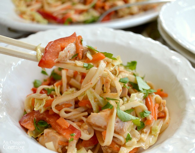 Spicy Chicken Noodle Salad