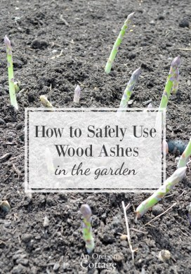 How To Use Wood Ashes In The Garden: Tips and Precautions