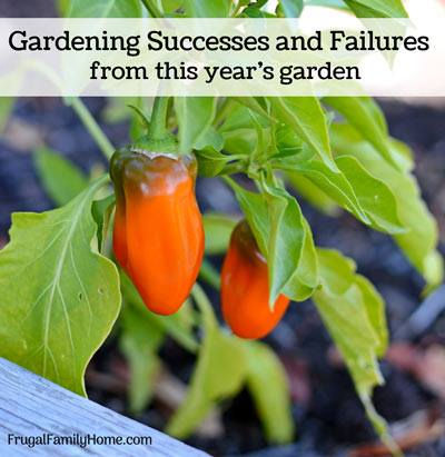 Garden Lessons Learned via Frugal Family Home