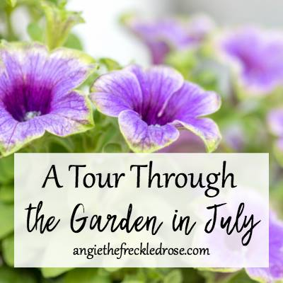 A July Garden Tour at The Freckled Rose