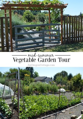 Raised Bed Vegetable Garden Tour