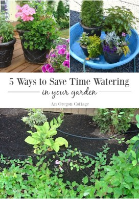 Five Ways to Save Water and Time in Your Garden