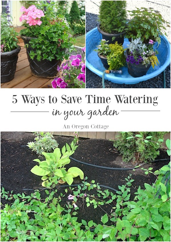 5 Ways to save time watering your garden.
