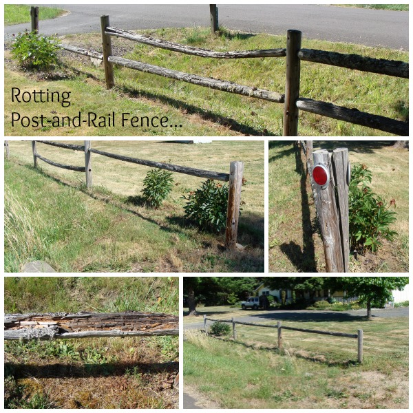 Rotting Post-and-Rail Fence