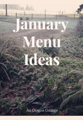 January Dinner Menu Ideas