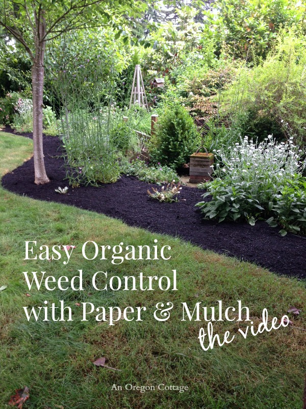 Recipe Fruit And Vegetable Borders