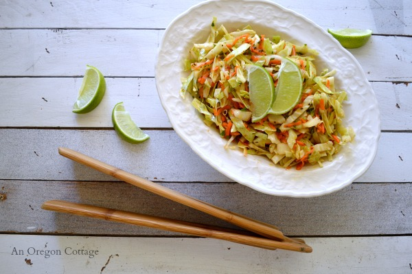 Spicy Coleslaw with Cumin-Lime Vinaigrette - An Oregon Cottage