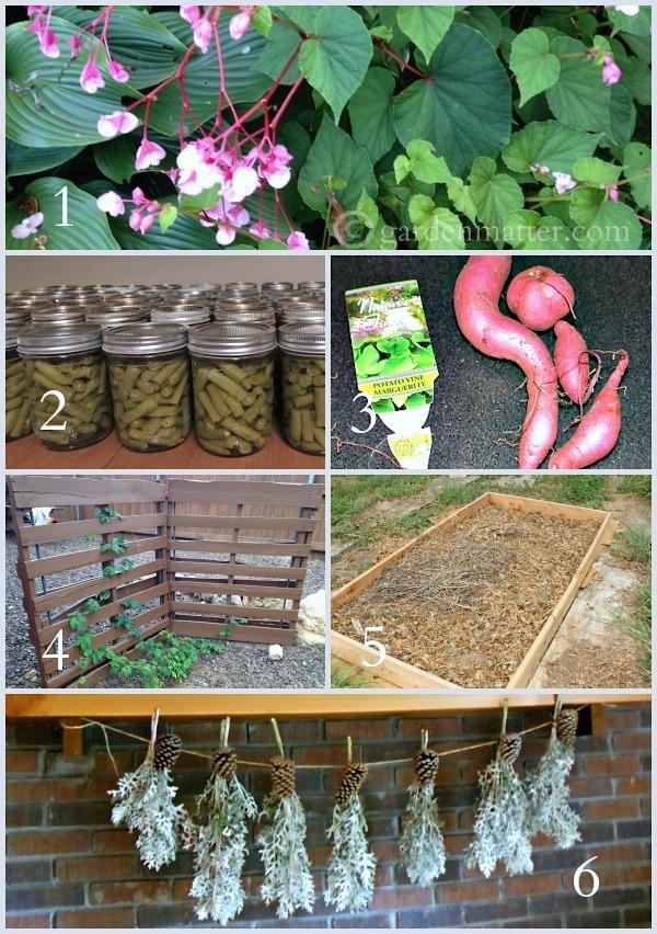 Tuesday Garden Party Features 9.30.14
