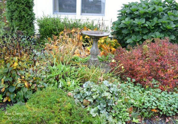 10-18-14 Flower Border.AnOregonCottage