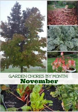 Garden Chores for November
