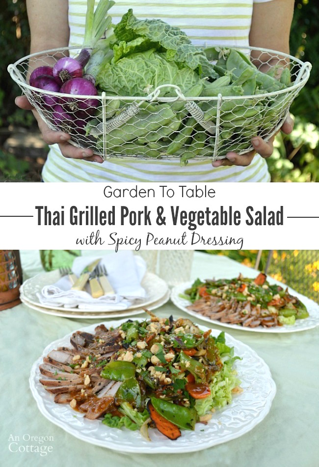 Garden To Table- use your garden or farmer's market produce to make a Thai style grilled pork and vegetable salad
