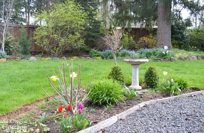 March cottage garden-patio garden