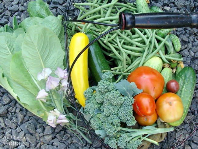 Easy garden tips-ultimate guides to growing and using vegetables
