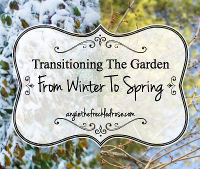 Transitioning the garden via The Freckled Rose