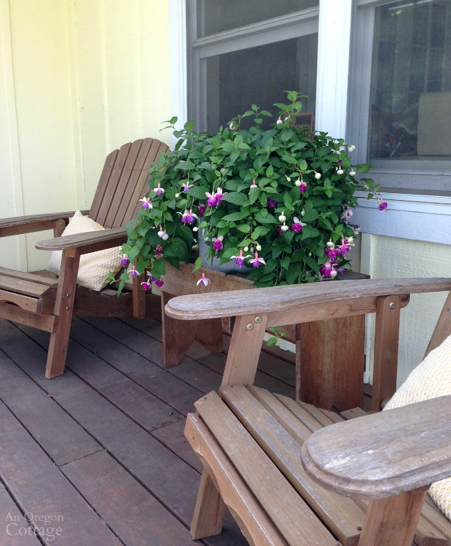 Potted Fuchsia and Adirondack chairs on porch.