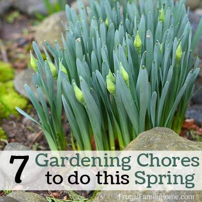 Gardening Chores to do This Spring-FrugalFamilyHome