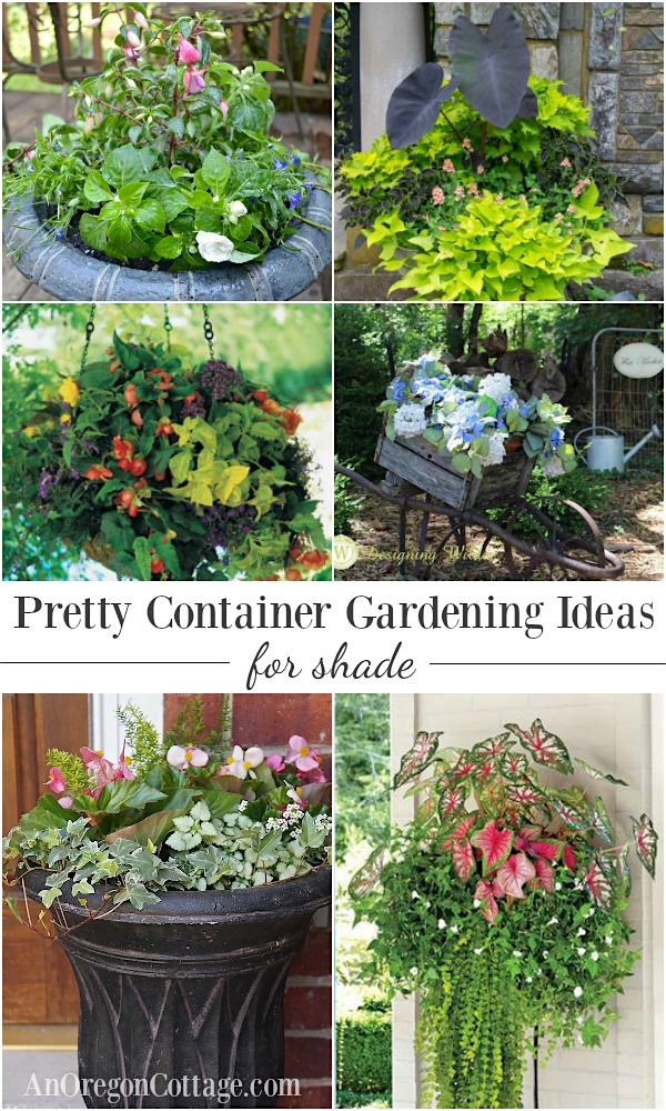 Flower Garden Ideas For Shade 12 beautiful container gardening ideas for shade