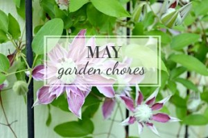May Garden Task Checklist