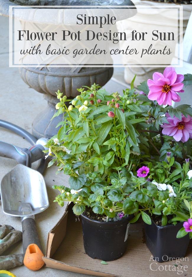 Simple Flower Pot Design for Sun with basic garden center plants