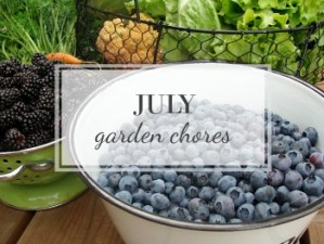 July Garden Task Checklist