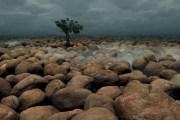 Κολασμένη Γη