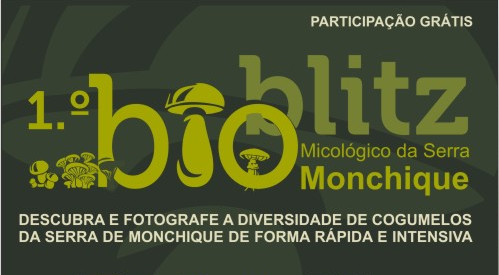 bioblitz-monchique-featured.jpg