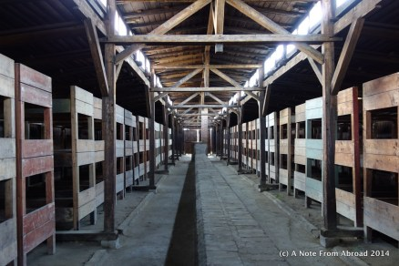 Rows of bunk beds. Surgeries were performed with no anesthetics or pain medications on the concrete slab that runs down the middle of the room between the beds.
