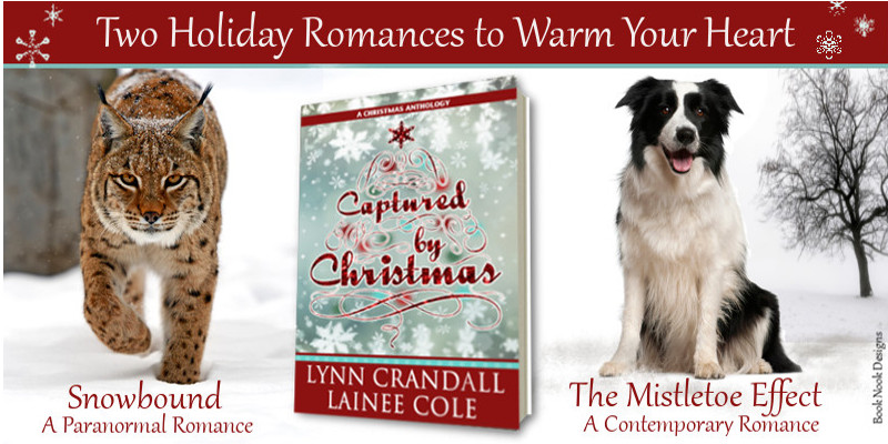 Captured by Christmas: A Christmas Anthology Cover Reveal