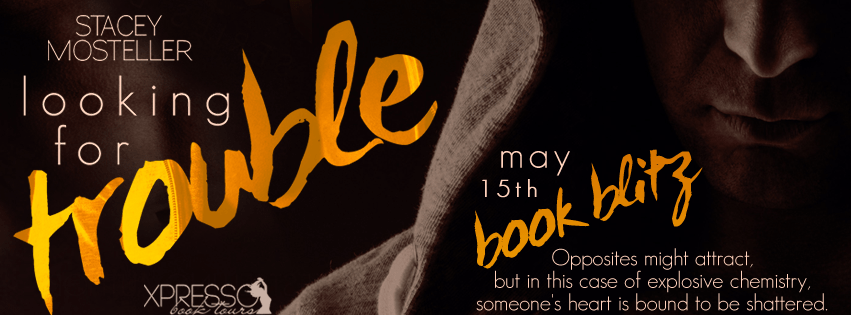 Looking For Trouble by Stacey Mosteller Book Blitz