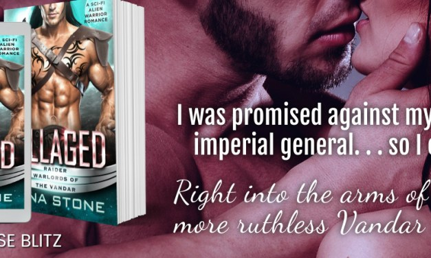 Pillaged by Tana Stone Release Blitz