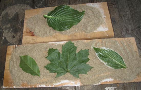 concrete leaves step 2