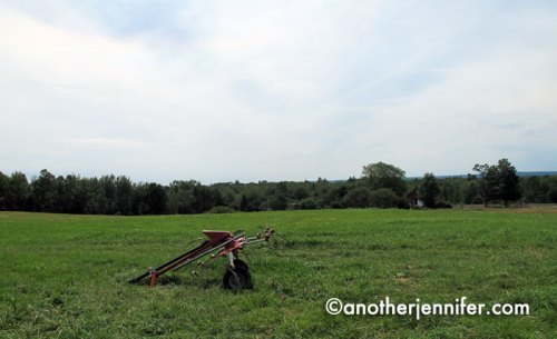 Wordless Wednesday (7.24.13): Open Farm Day, Maine by Jennifer Barbour