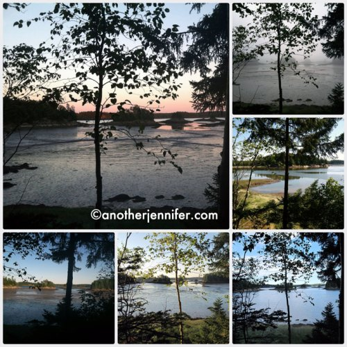 The view from our campsite at Cobscook Bay State Park in Dennysville, Maine.
