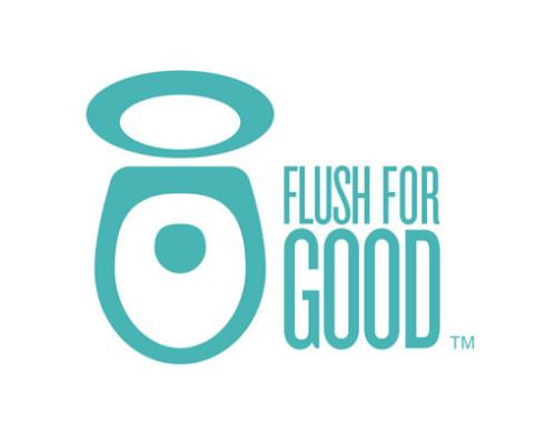 american standard flush for good