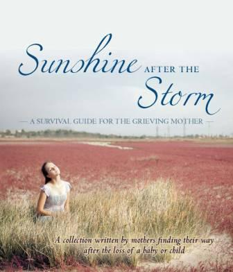Sunshine After the Storm cover